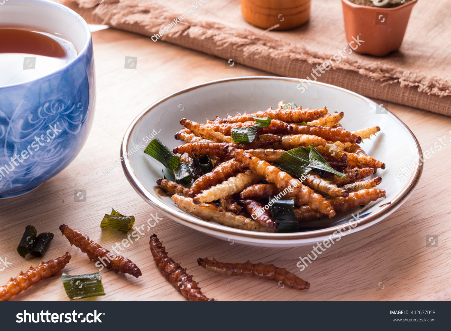 Bamboo worm insect crispy