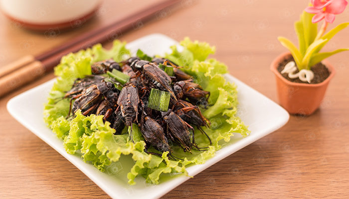 Cricket insect crispy with pandan